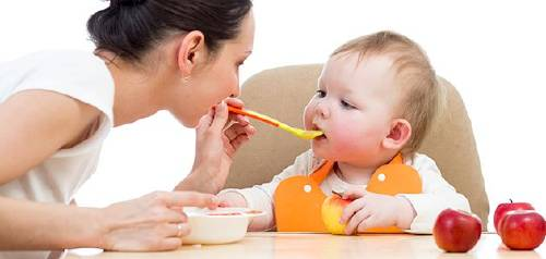 comida bebes infantil papilla