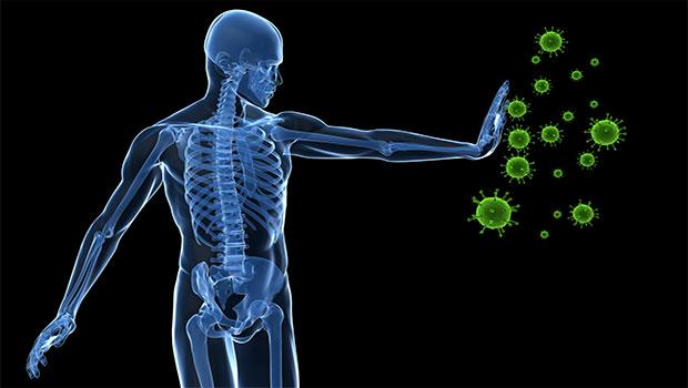Después de una infección bacteriana, el sistema inmunitario ...